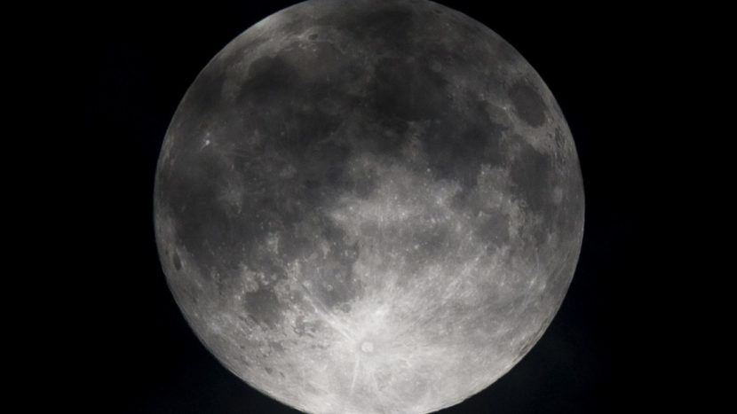 Moon tourist