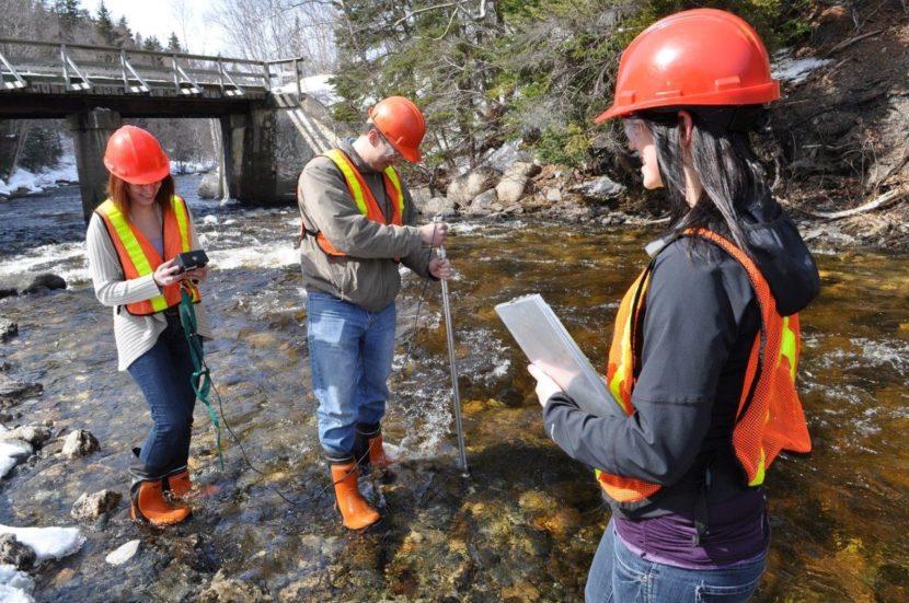environmental engineers at work