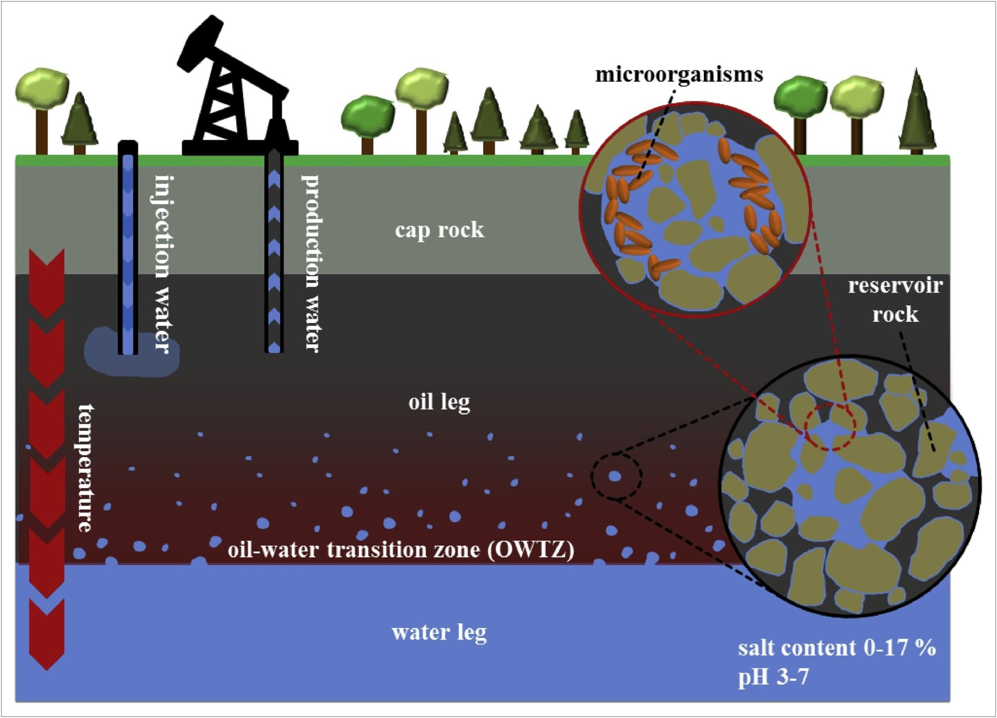 Different layers of Earth for extraction of oil
